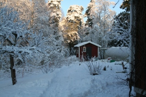 Hönshus vinter -14