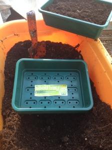 Seedtray