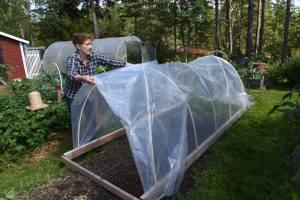 Flyttbart växthus. Foto Lena Israelsson